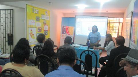 Reunión Ordinaria del CER MCLCP-Ica