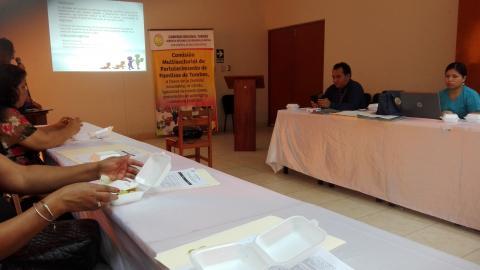 Reunión Para Conformación de Mesa de Trabajo Para la Reducción de la Desnutrición Crónica Infantil y Anemia.