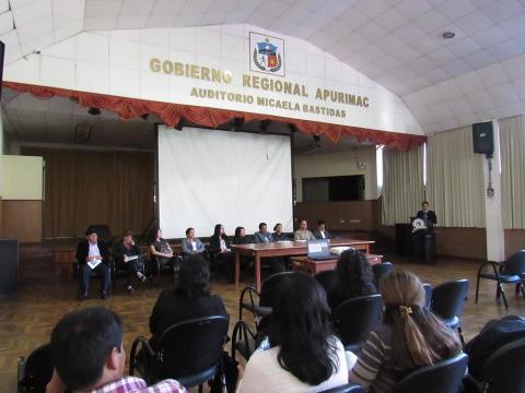 Se aprueba reglamento de la Instancia Regional de Concertación de para la prevención, sanción y erradicación de la violencia contra la mujer y los integrantes del grupo familiar de la región Apurímac