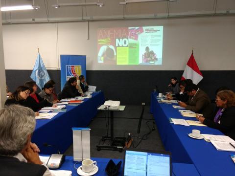Comité Ejecutivo Nacional aprueba recomendaciones para reducir anemia infantil y embarazo adolescente